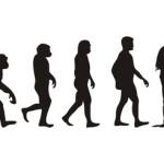 evolución | social media